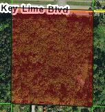 Xxxx Key Lime, Loxahatchee, Florida 33470